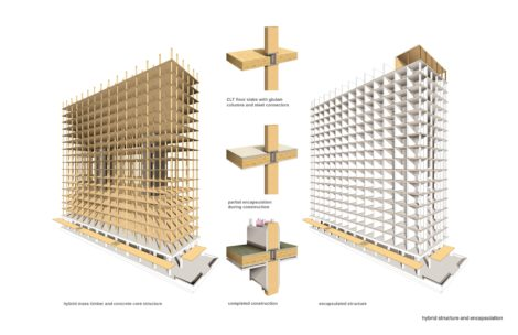 mass wood structure and encapsulation
