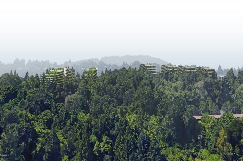 The Terraces nestled in a forest setting